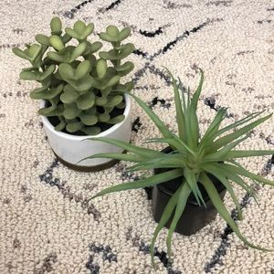 Faux Plants - Set of Two